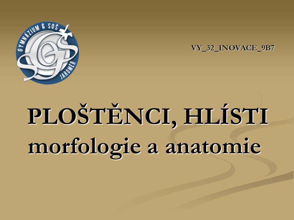 VY_32_INOVACE_9B7 PLOŠTĚNCI, HLÍSTI morfologie a anatomie