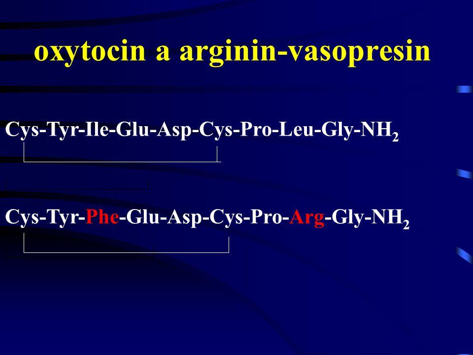 oxytocin a arginin-vasopresin