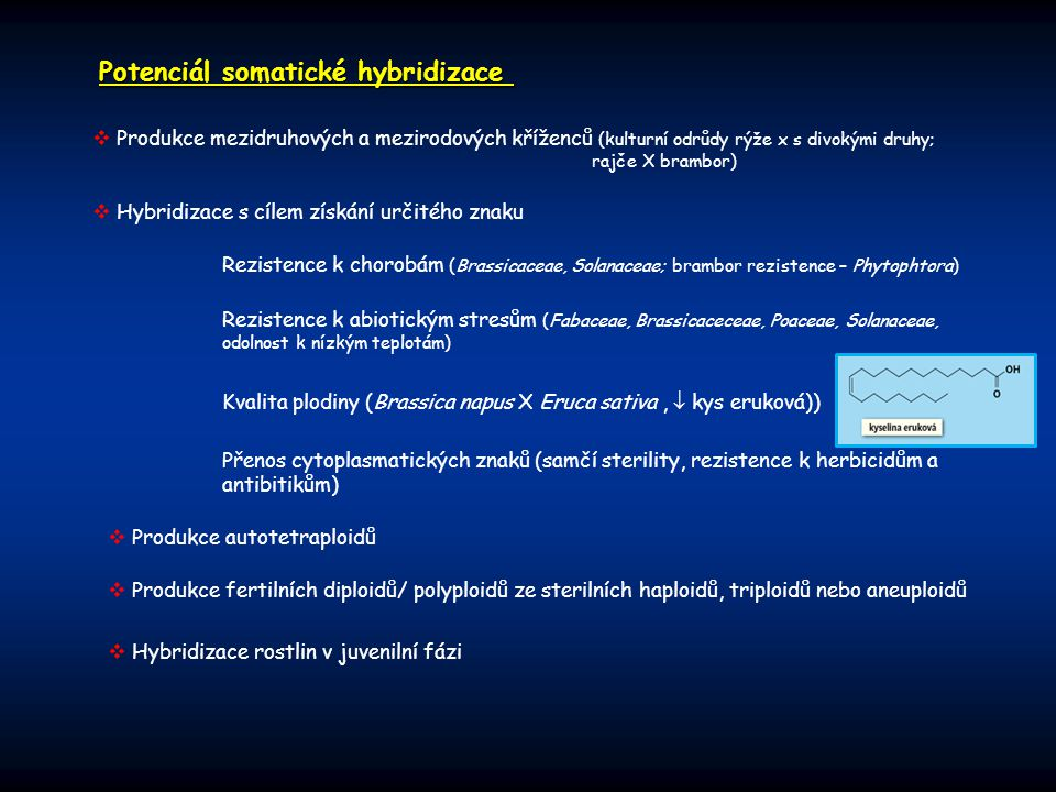 Potenciál somatické hybridizace