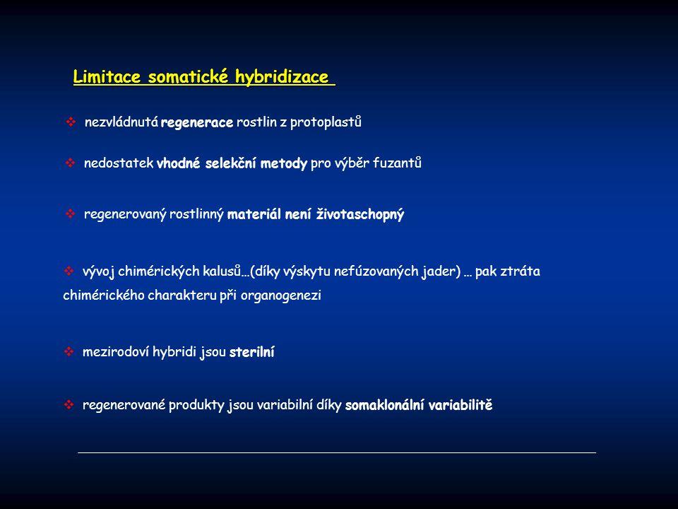 Limitace somatické hybridizace