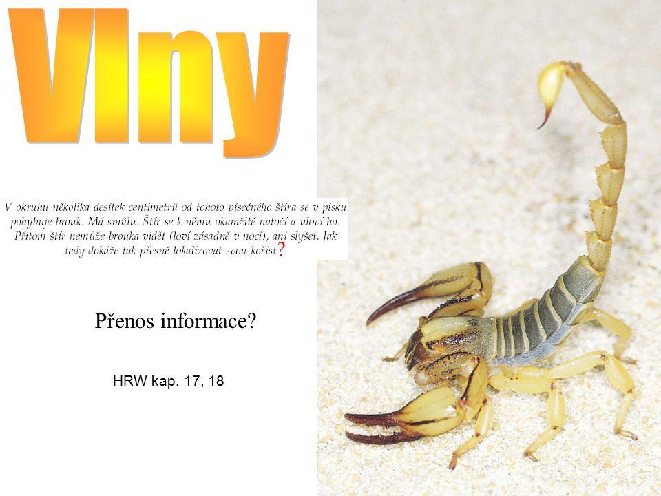 Vlny Přenos informace HRW kap. 17, 18