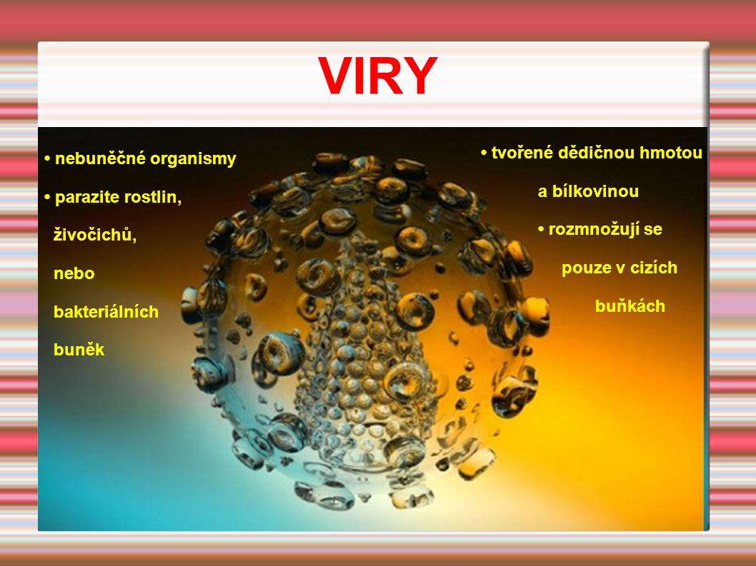 VIRY • tvořené dědičnou hmotou • nebuněčné organismy a bílkovinou