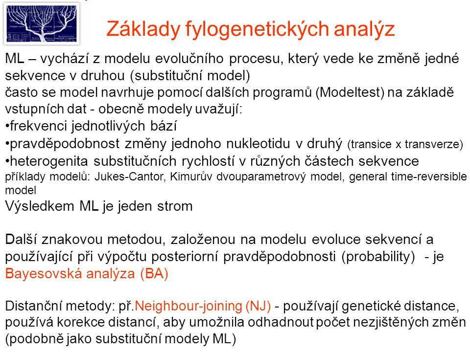 Základy fylogenetických analýz