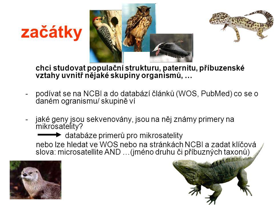 začátky chci studovat populační strukturu, paternitu, příbuzenské vztahy uvnitř nějaké skupiny organismů, …