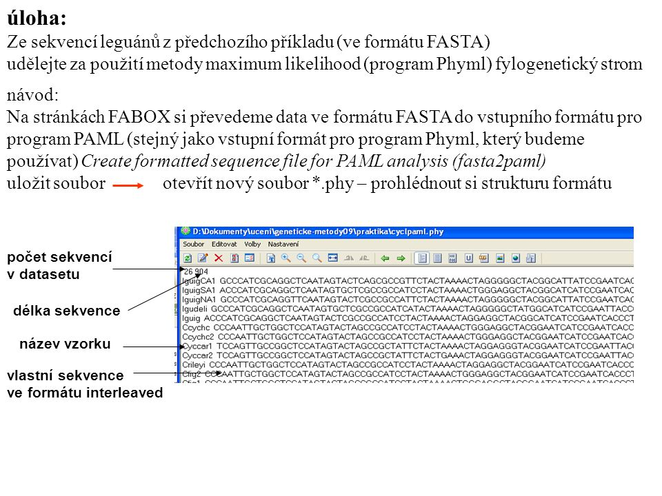 úloha: Ze sekvencí leguánů z předchozího příkladu (ve formátu FASTA)