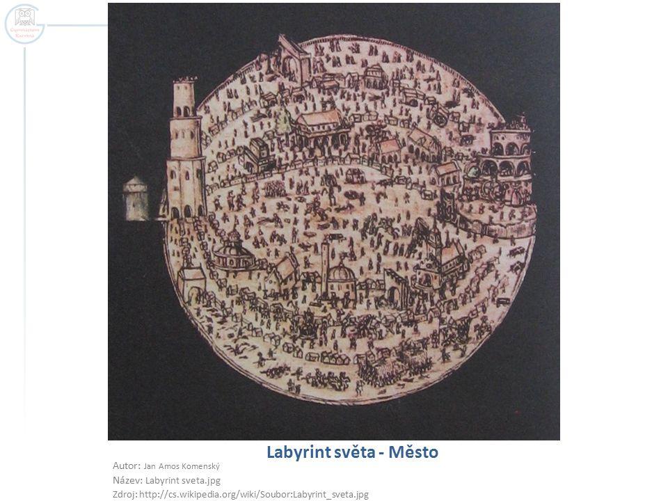 Labyrint světa - Město Autor: Jan Amos Komenský