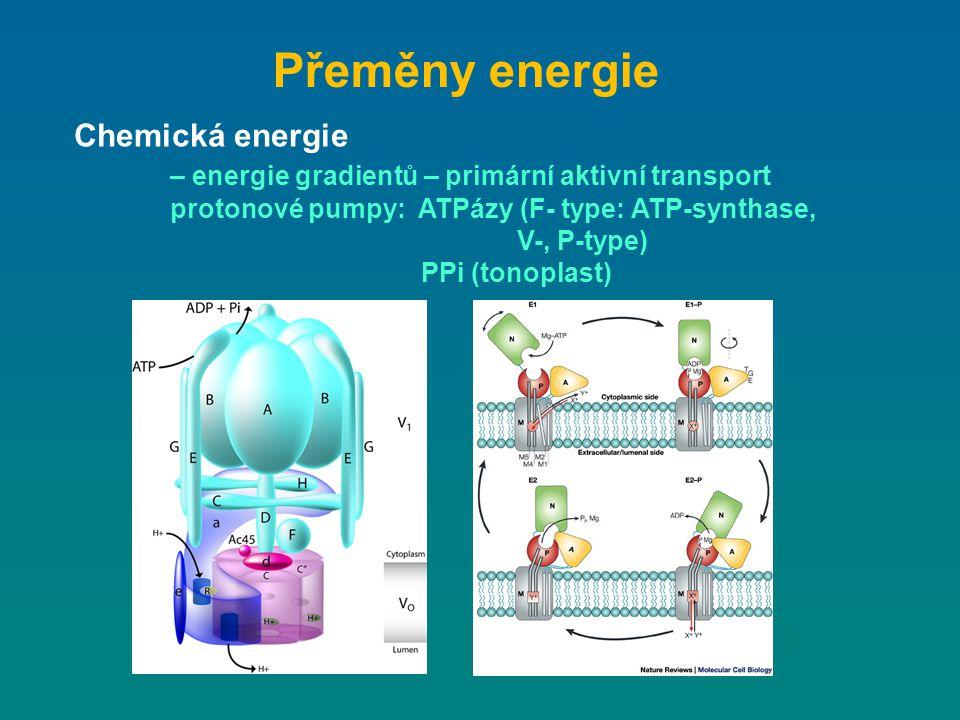 Přeměny energie Chemická energie