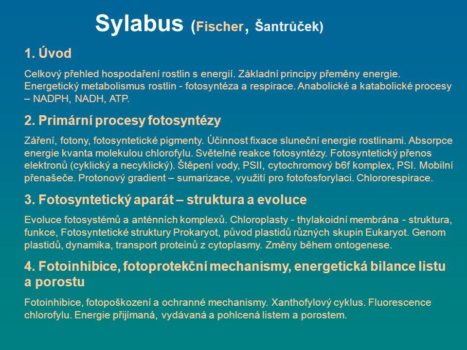 Sylabus (Fischer, Šantrůček)
