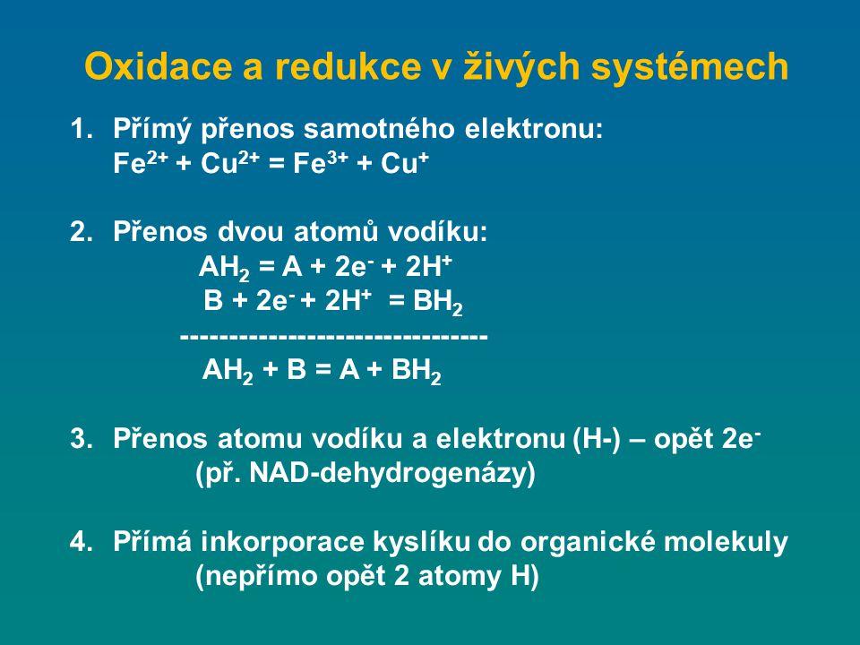 Oxidace a redukce v živých systémech