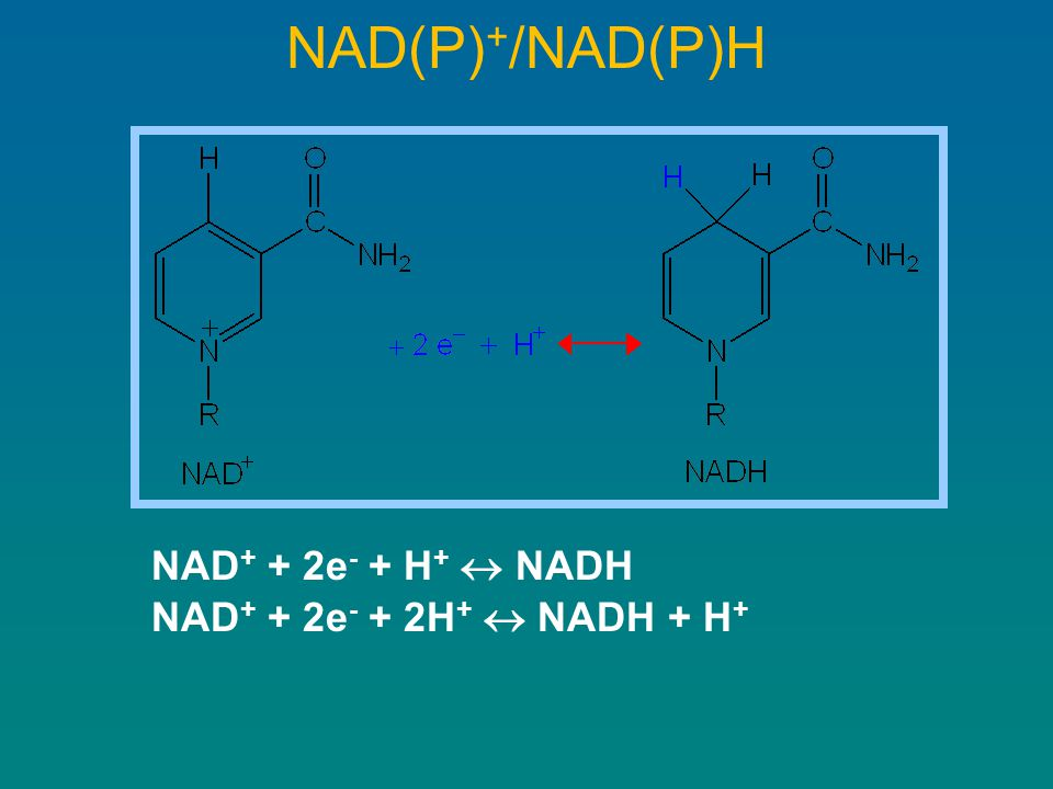 NAD(P)+/NAD(P)H NAD+ + 2e- + H+  NADH NAD+ + 2e- + 2H+  NADH + H+