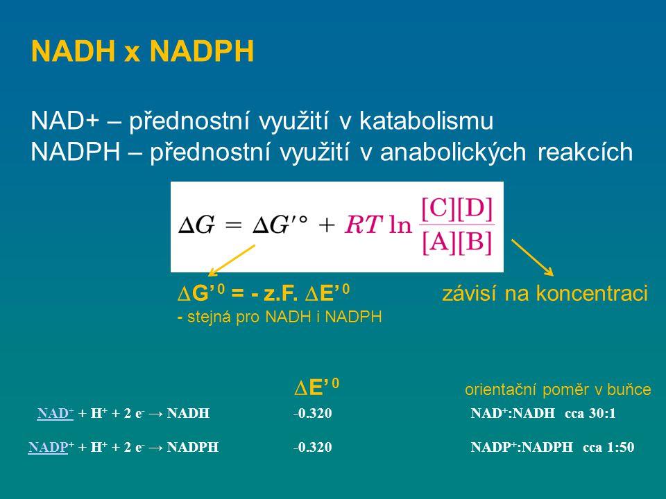 NADH x NADPH NAD+ – přednostní využití v katabolismu