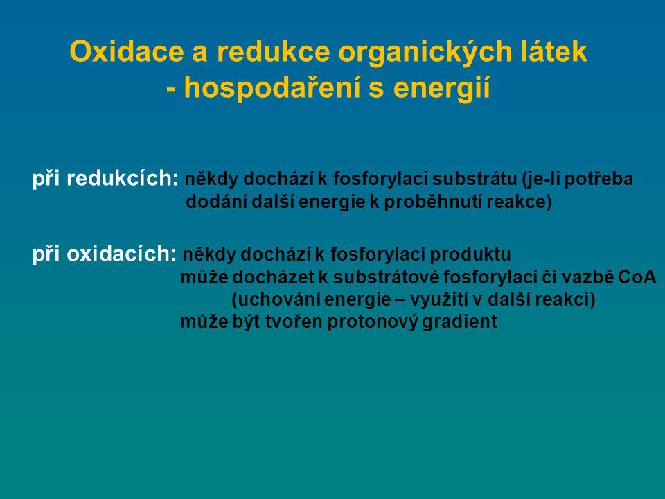 Oxidace a redukce organických látek - hospodaření s energií