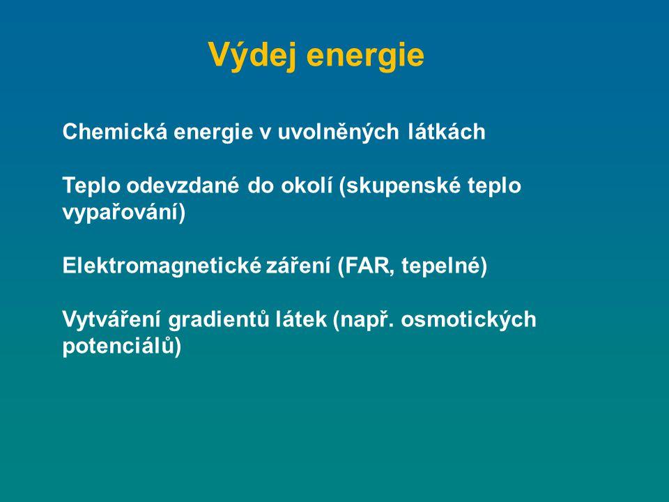 Výdej energie Chemická energie v uvolněných látkách