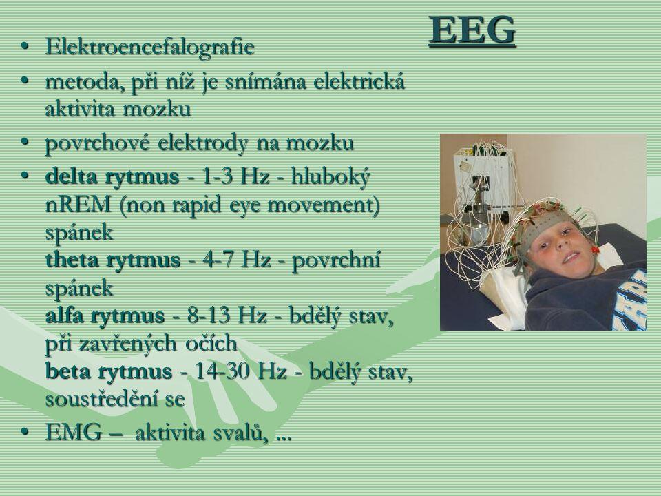EEG Elektroencefalografie