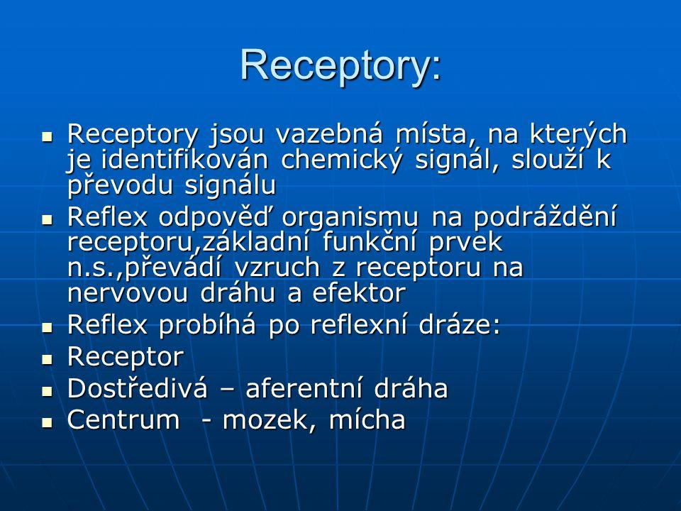 Receptory: Receptory jsou vazebná místa, na kterých je identifikován chemický signál, slouží k převodu signálu.