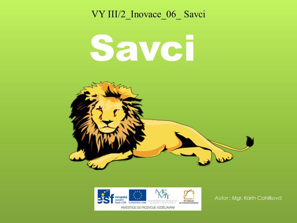 VY III/2_Inovace_06_ Savci
