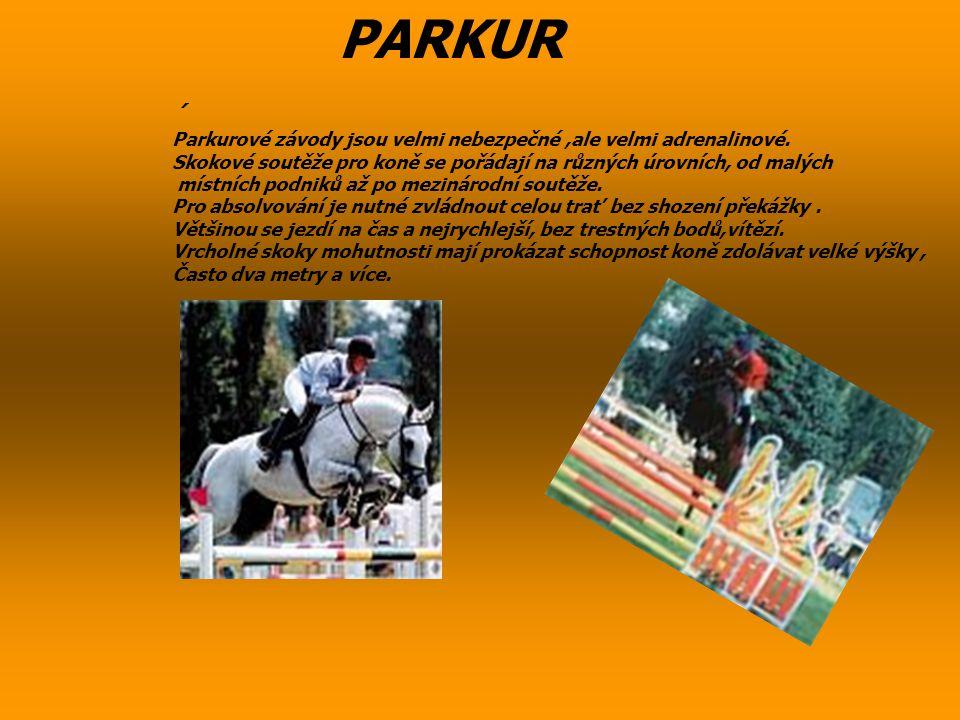 PARKUR ´ Parkurové závody jsou velmi nebezpečné ,ale velmi adrenalinové. Skokové soutěže pro koně se pořádají na různých úrovních, od malých.
