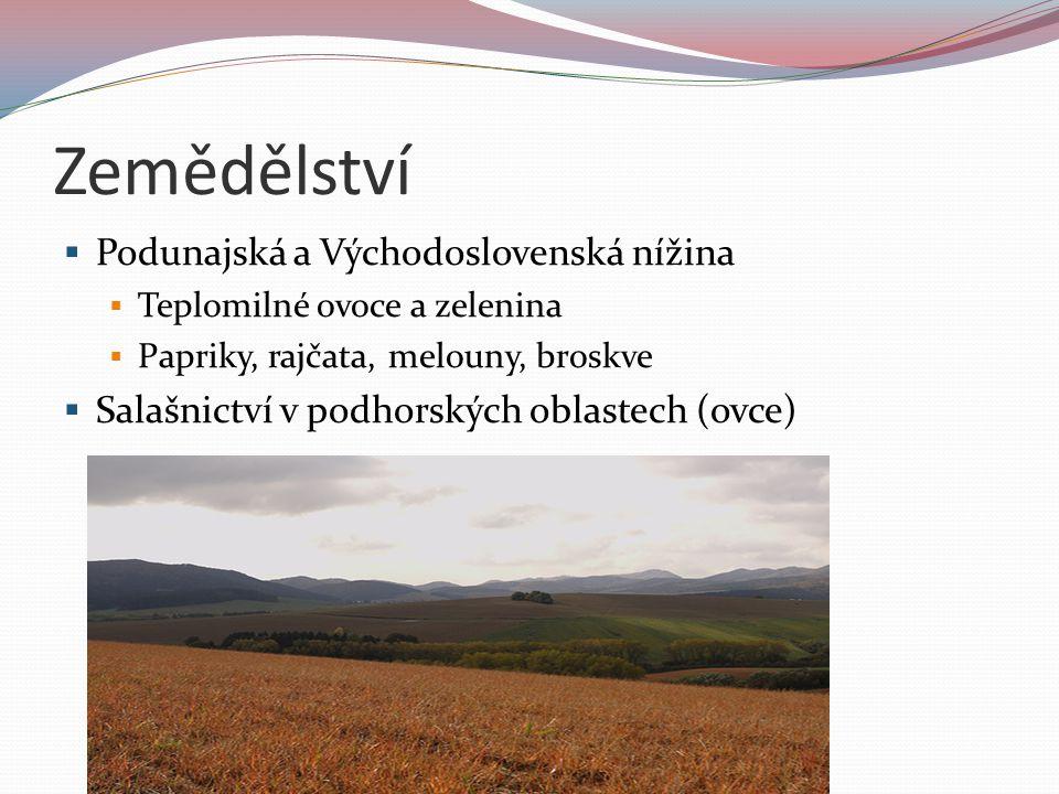 Zemědělství Podunajská a Východoslovenská nížina