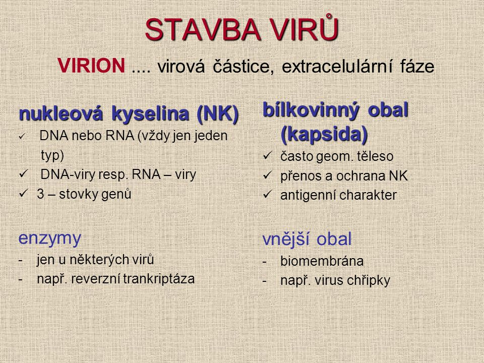 STAVBA VIRŮ VIRION .... virová částice, extracelulární fáze
