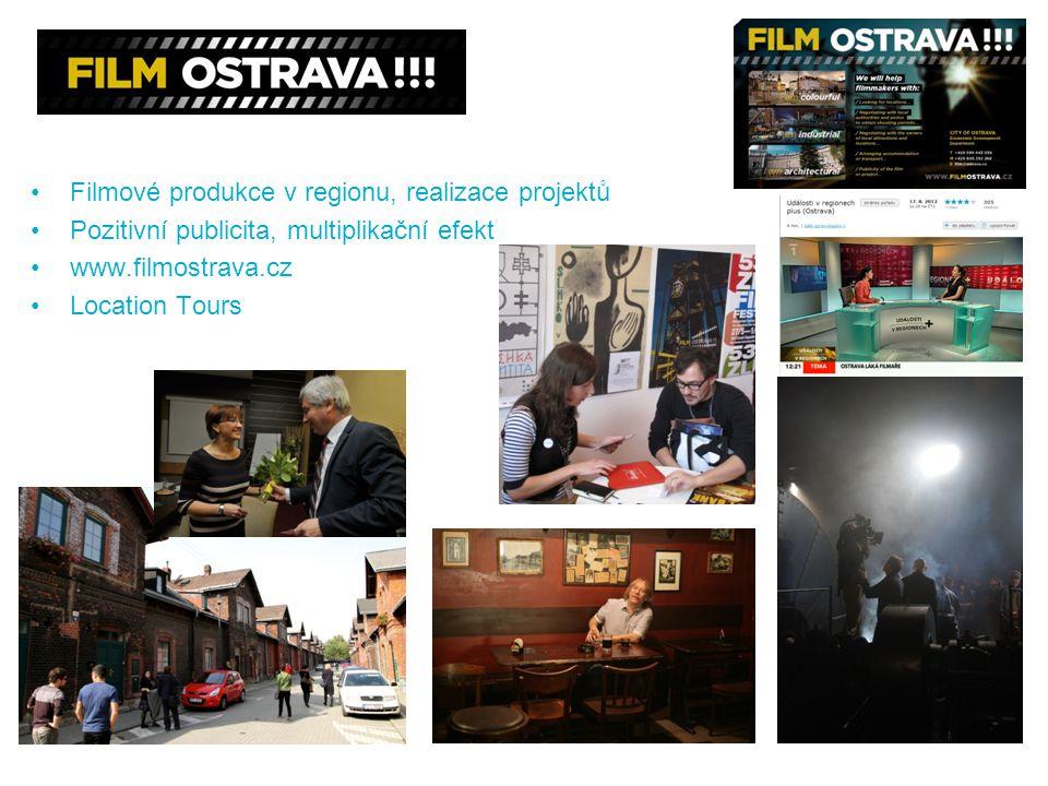 Filmové produkce v regionu, realizace projektů