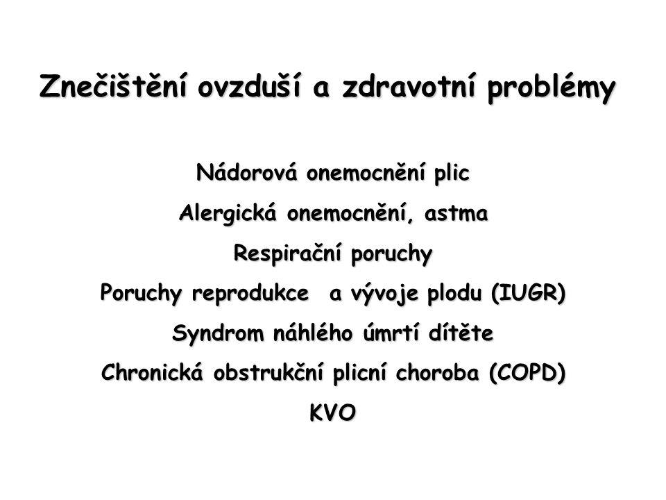 Znečištění ovzduší a zdravotní problémy