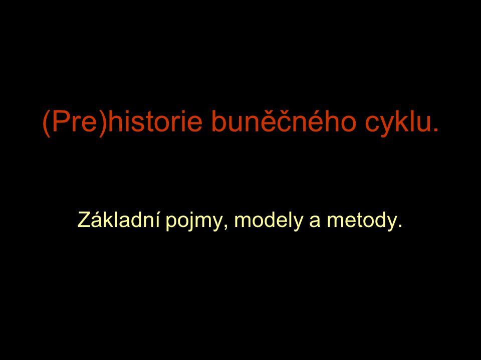 (Pre)historie buněčného cyklu.