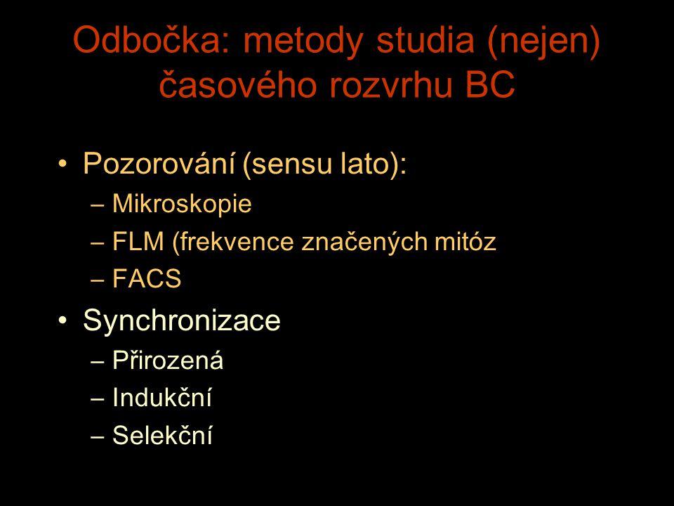 Odbočka: metody studia (nejen) časového rozvrhu BC