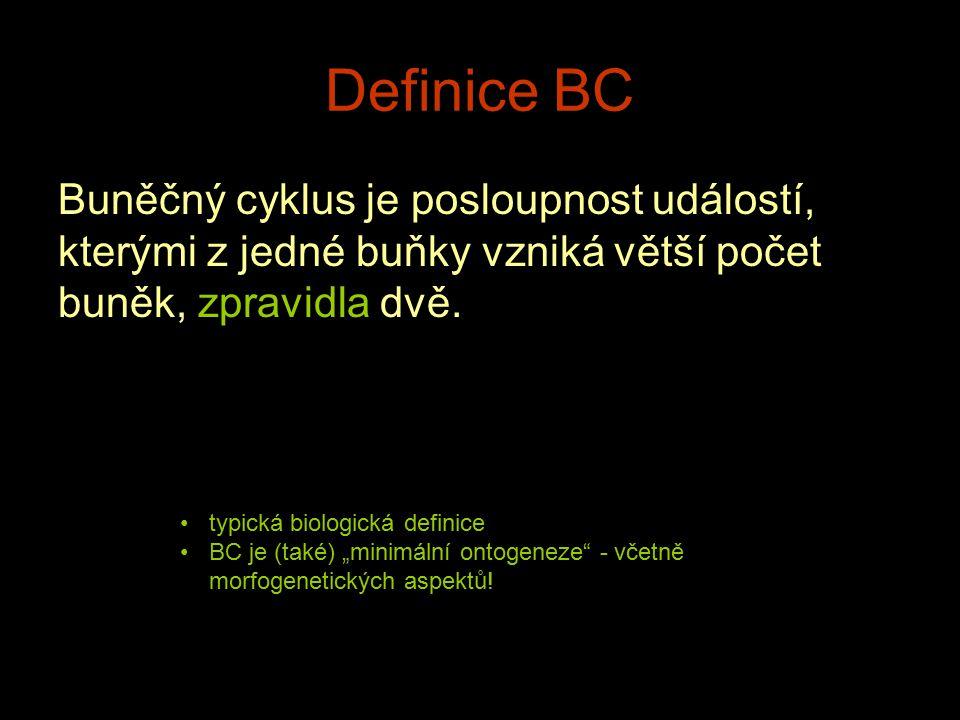 Definice BC Buněčný cyklus je posloupnost událostí, kterými z jedné buňky vzniká větší počet buněk, zpravidla dvě.