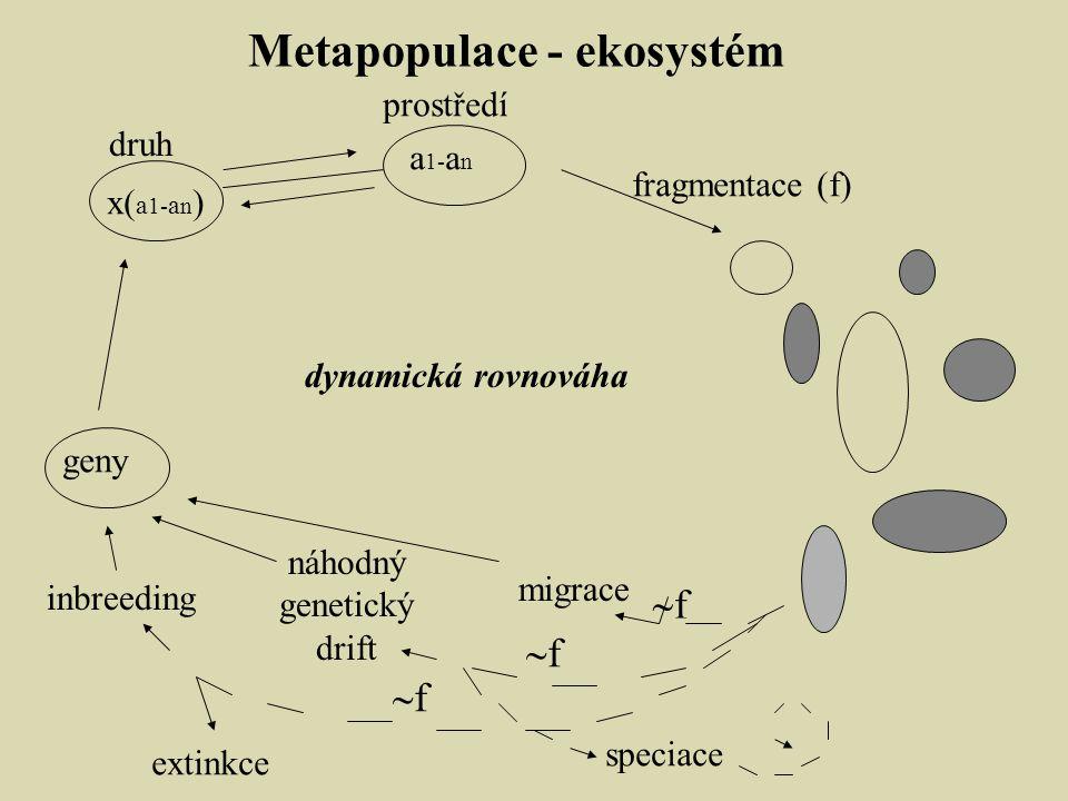 Metapopulace - ekosystém