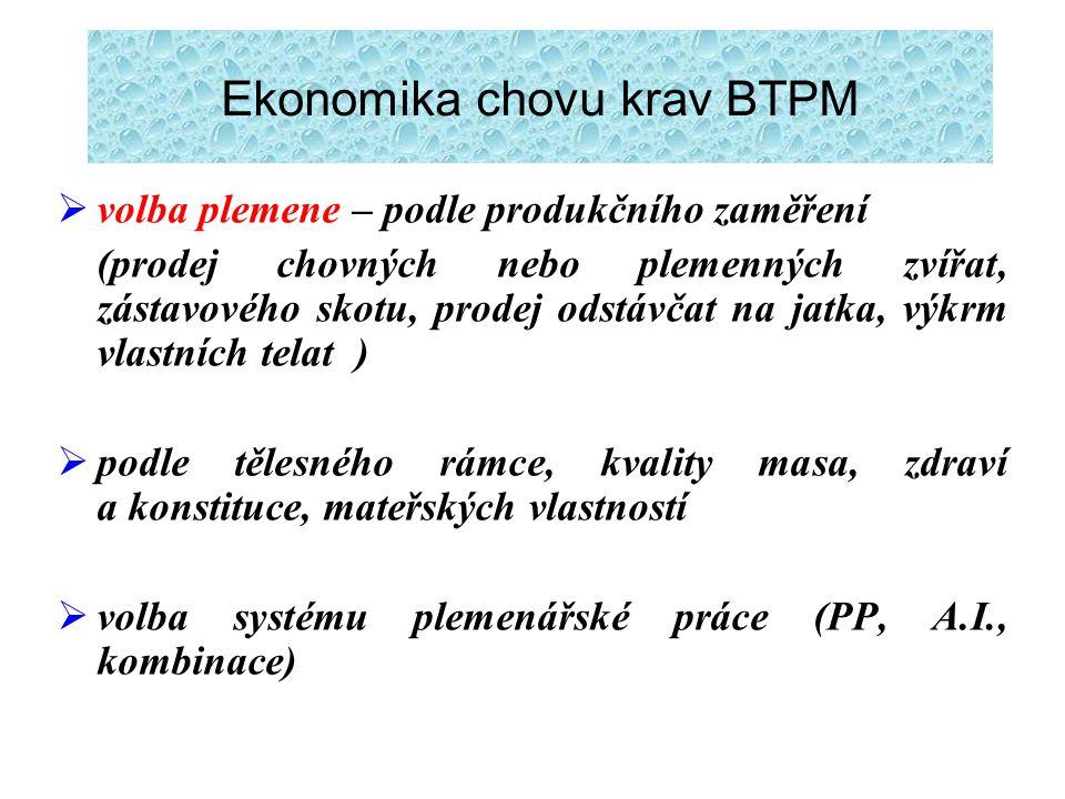 Ekonomika chovu krav BTPM
