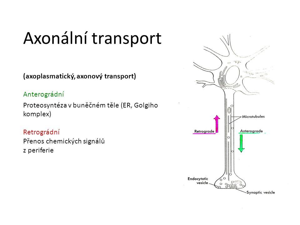 Axonální transport (axoplasmatický, axonový transport) Anterográdní