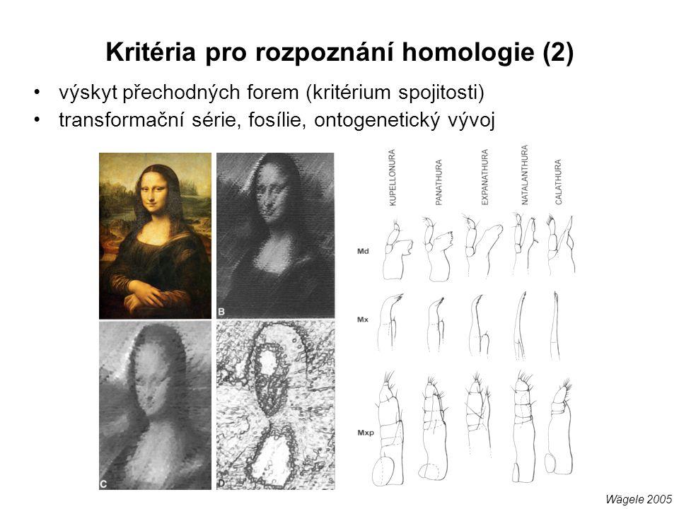 Kritéria pro rozpoznání homologie (2)