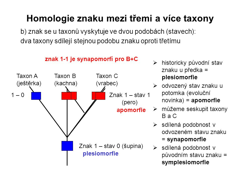 Homologie znaku mezi třemi a více taxony