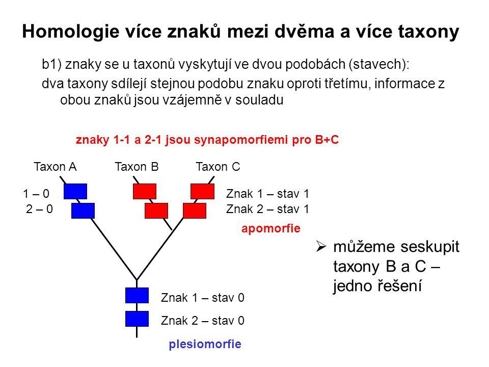 Homologie více znaků mezi dvěma a více taxony