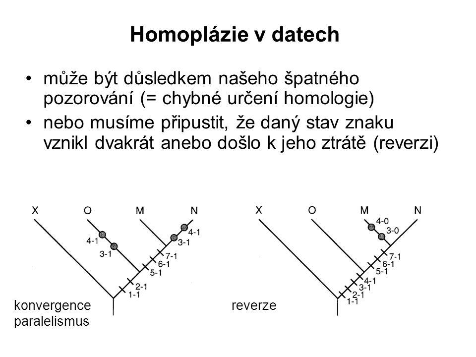 Homoplázie v datech může být důsledkem našeho špatného pozorování (= chybné určení homologie)