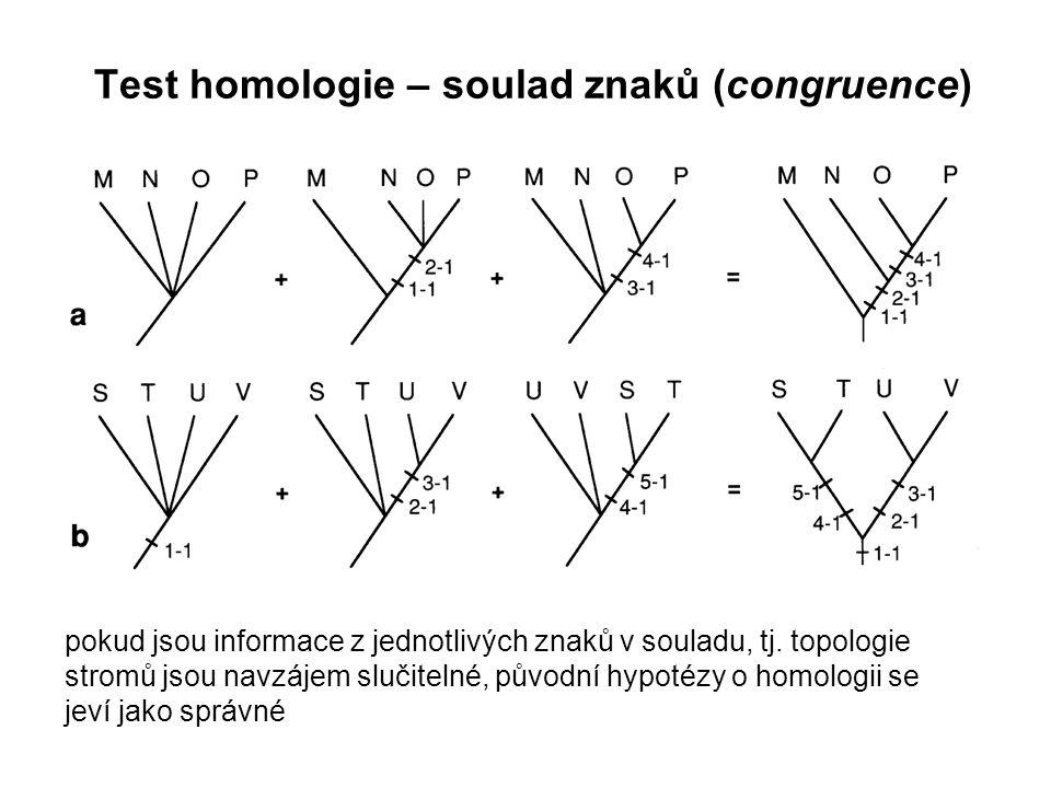 Test homologie – soulad znaků (congruence)