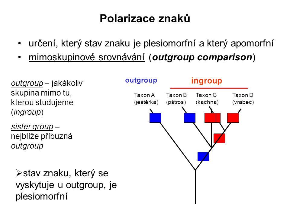 Polarizace znaků určení, který stav znaku je plesiomorfní a který apomorfní. mimoskupinové srovnávání (outgroup comparison)