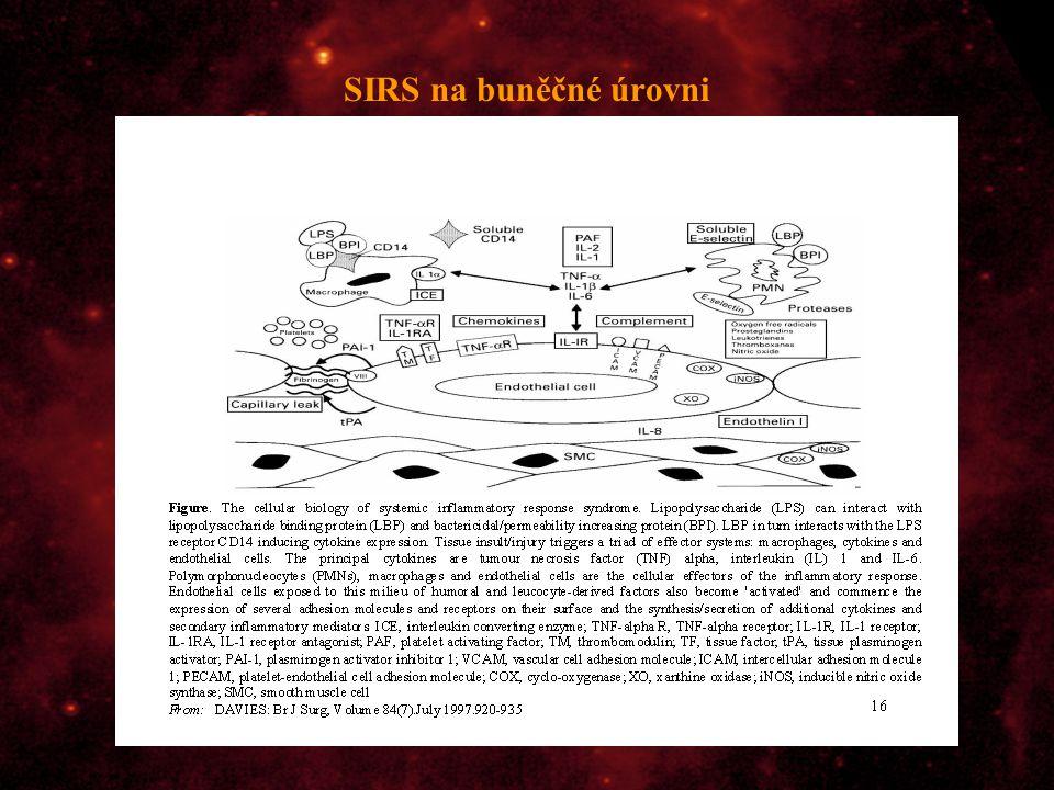 SIRS na buněčné úrovni