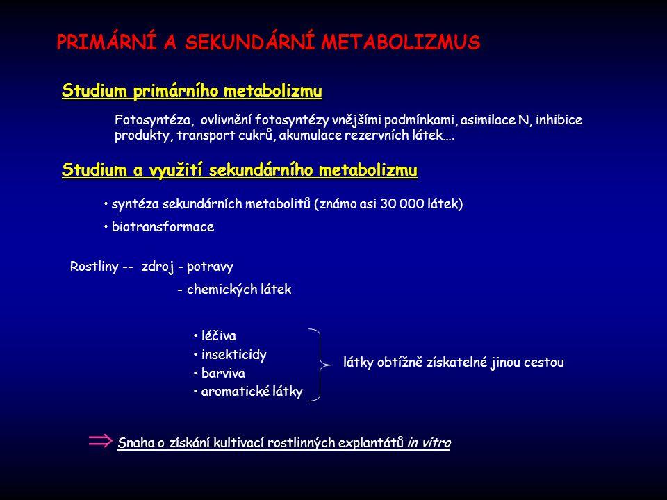  Snaha o získání kultivací rostlinných explantátů in vitro