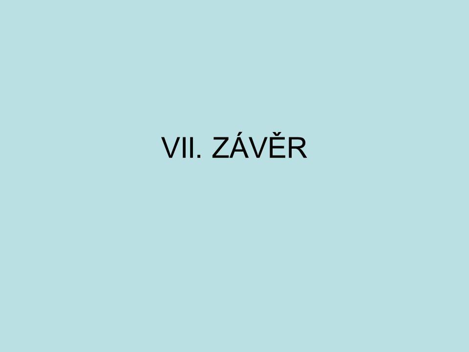 VII. ZÁVĚR