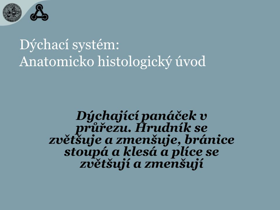 Dýchací systém: Anatomicko histologický úvod
