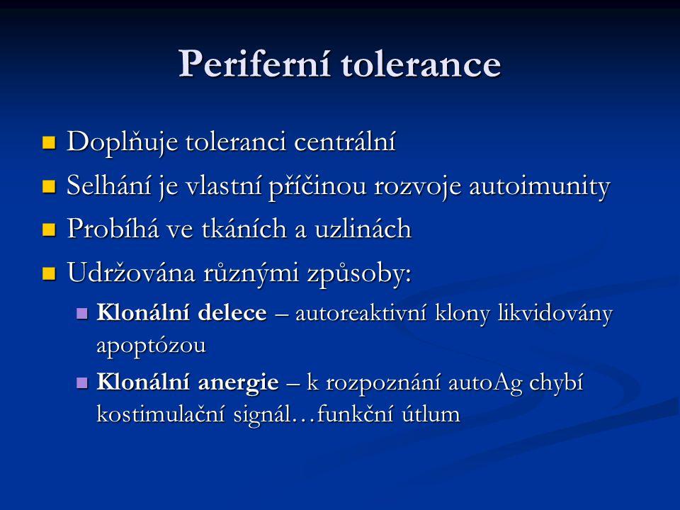 Periferní tolerance Doplňuje toleranci centrální