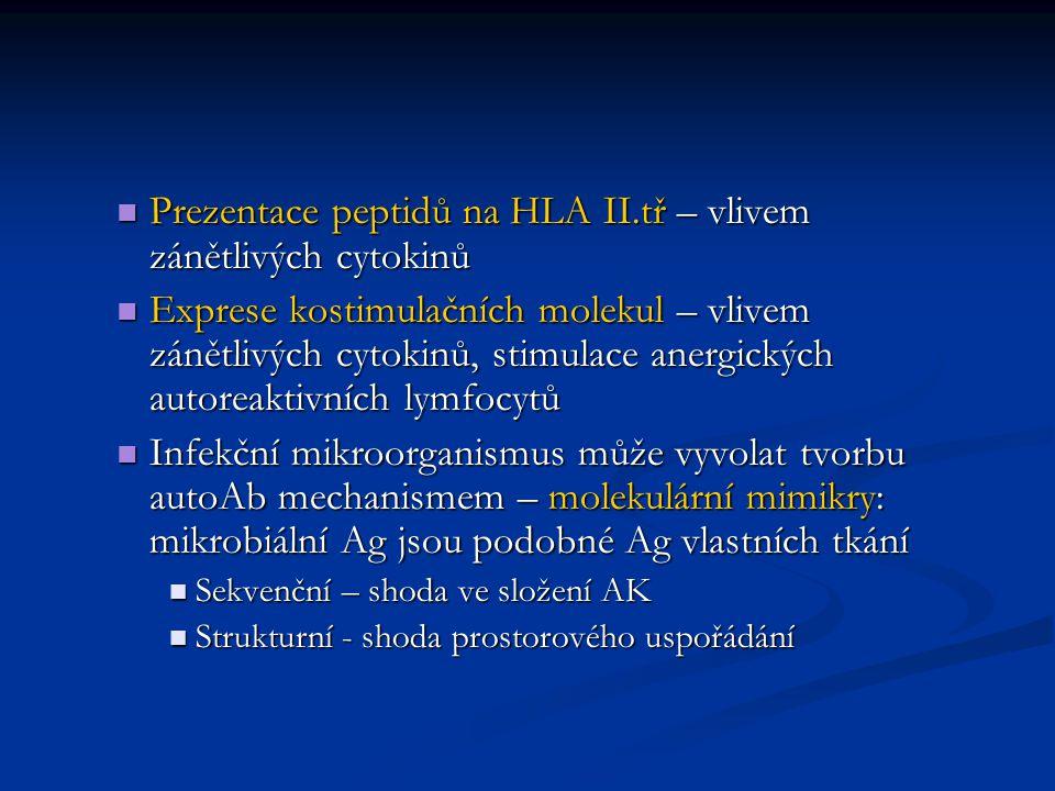 Prezentace peptidů na HLA II.tř – vlivem zánětlivých cytokinů