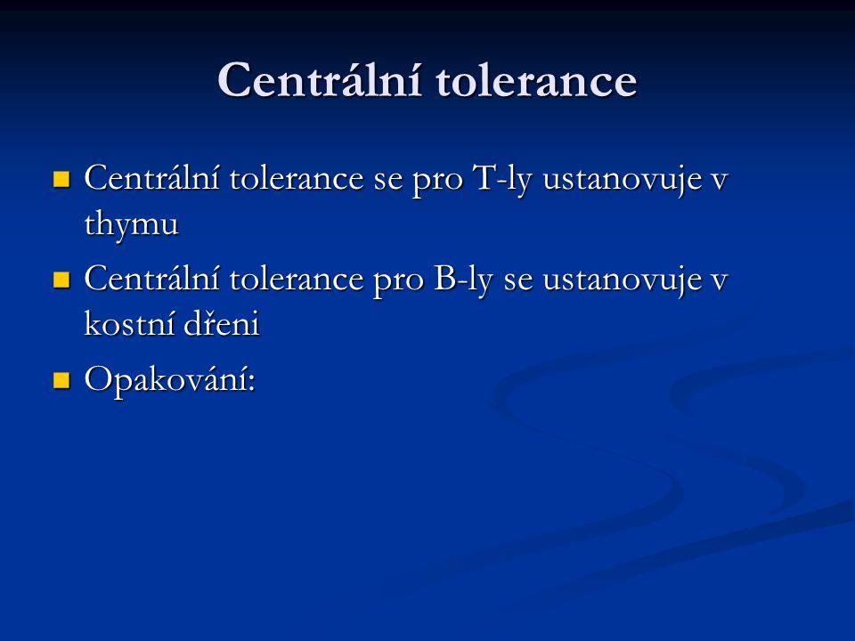 Centrální tolerance Centrální tolerance se pro T-ly ustanovuje v thymu