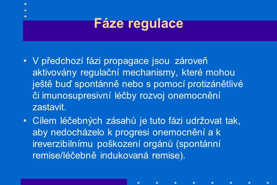 Fáze regulace
