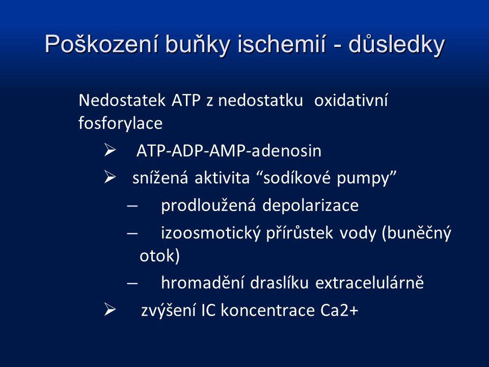 Poškození buňky ischemií - důsledky