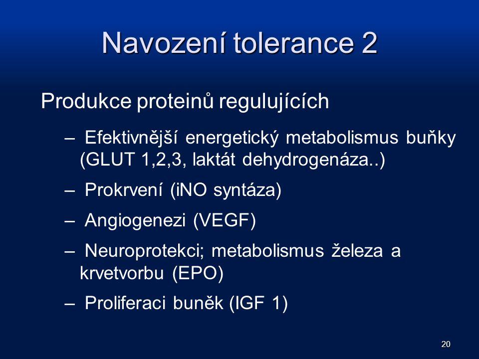 Navození tolerance 2 Produkce proteinů regulujících