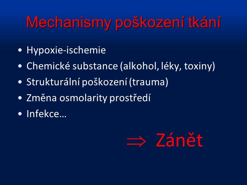 Mechanismy poškození tkání