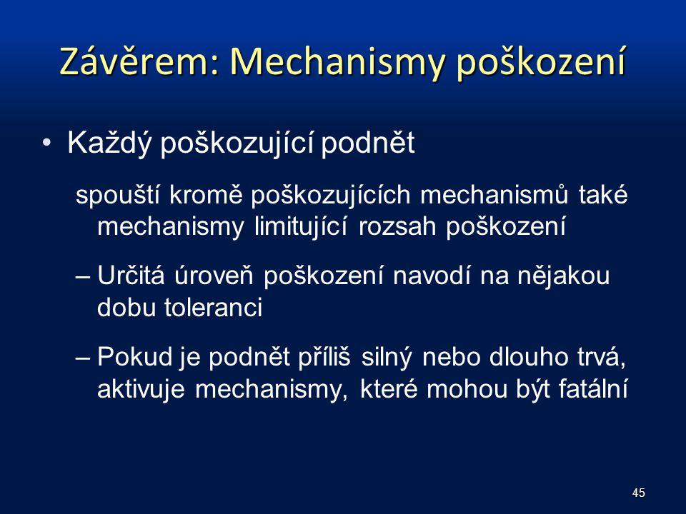 Závěrem: Mechanismy poškození
