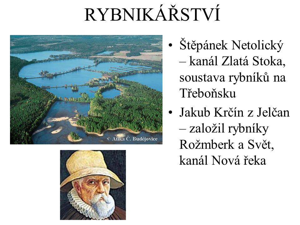 RYBNIKÁŘSTVÍ Štěpánek Netolický – kanál Zlatá Stoka, soustava rybníků na Třeboňsku.
